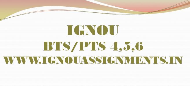 IGNOU BTS/DTS (PTS-4-5-6) PROJECT REPORT - IGNOU Solved
